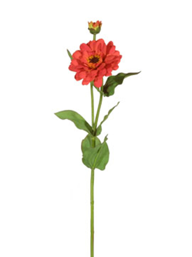 Picture of ZINNIA SPRAY-OR