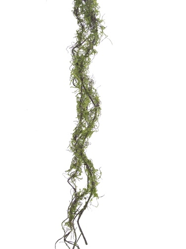 Picture of 5' MOSSY TWIG VINE