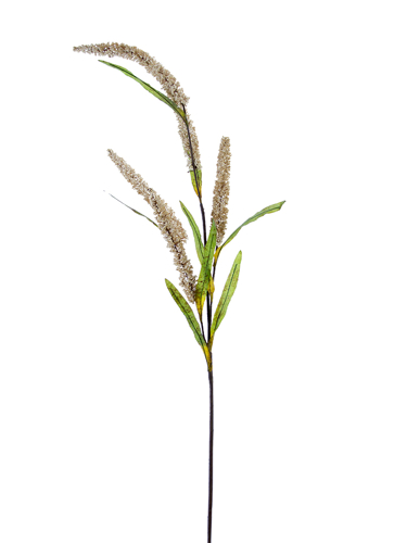 """Picture of 47"""" FOXTAIL SPRAY"""