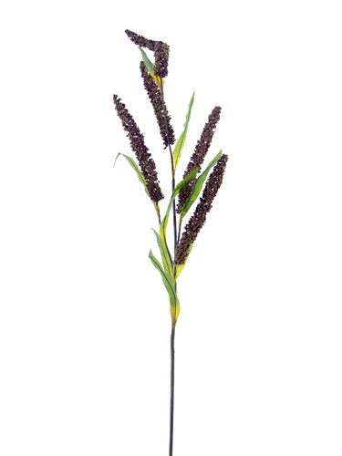 "Picture of 47"" FOXTAIL SPRAY"