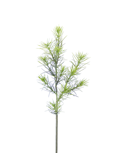 """Picture of 20"""" LARCH PICK"""