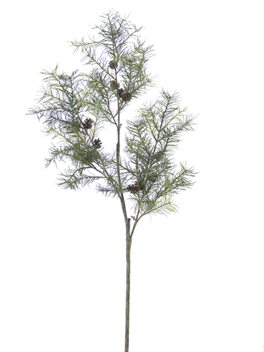 """Picture of 47"""" LARCH W/CONES SPRAY"""