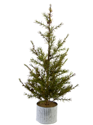 "Picture of 28"" LARCH PINE TREE W/POT"