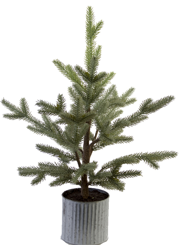 """Picture of 28"""" BALSAM PINE TREE"""