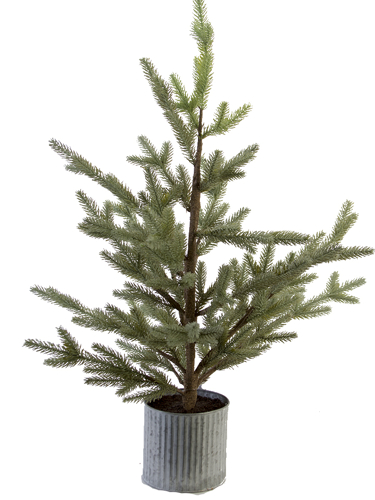 """Picture of 36"""" BALSAM PINE TREE"""