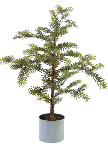 """Picture of 35"""" SITKA PINE TREE POT"""