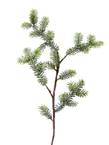 """Picture of 46"""" SITKA SPRUCE SPRAY"""