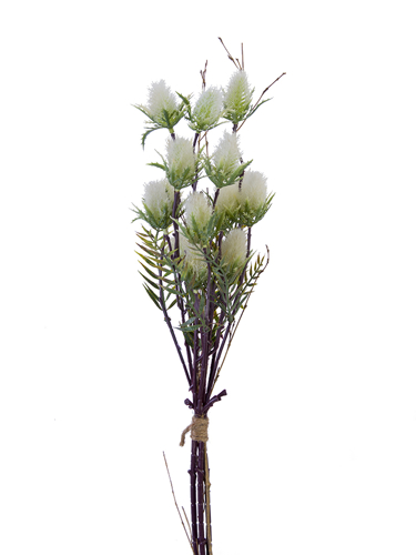 Picture of 23'' PUSSY WILLOW BUNDLE