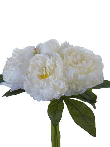 "Picture of 11.8""PEONY BUNDLE"