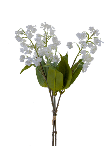 """Picture of 19"""" LILY OF THE VALLEY BDLE"""