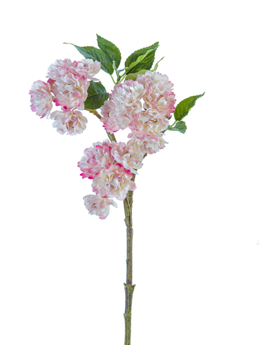 """Picture of 18"""" BLOSSOM SPRAY"""