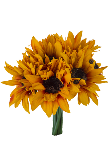 """Picture of 10"""" SUNFLOWER BOUQUET X8"""