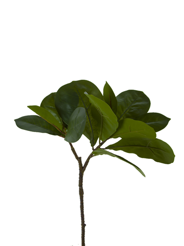 "Picture of 25"" TROP LEAF BRANCH X2"