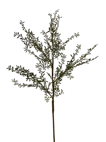 """Picture of 47"""" WATER GRASS BRANCH"""