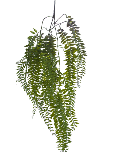"Picture of 34"" HANGING FOLIAGE"