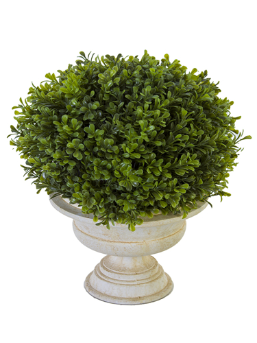 "Picture of 15"" BOXWOOD TOPIARY W/URN"