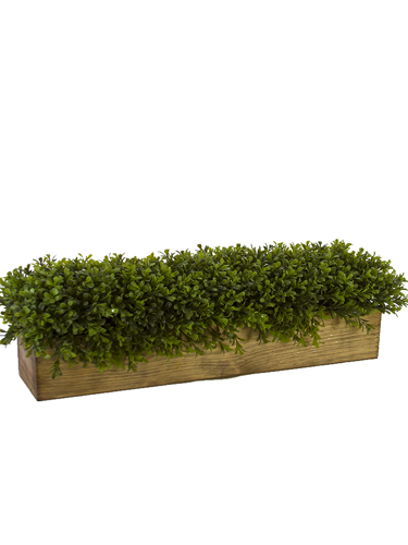 "Picture of 24"" BOXWOOD RECT PLANTER"