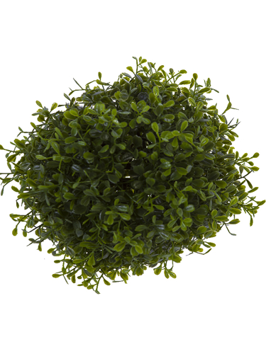 "Picture of 8"" BOXWOOD BALL"
