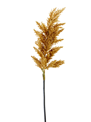 """Picture of 34.5"""" DRIED ASTILBE SPRAY"""