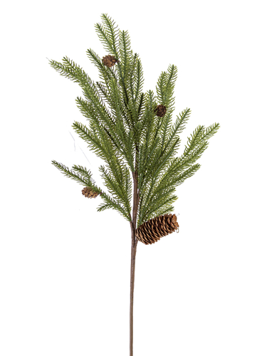 "Picture of 32"" DOUGLAS FIR BRANCH"