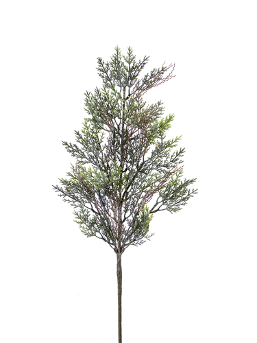 "Picture of 28"" FROSTED CYPRESS SPRAY X 37"