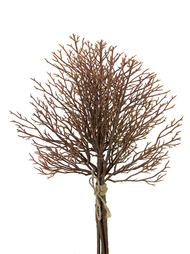 "Picture of 16"" CORAL TWIG BUNDLE"
