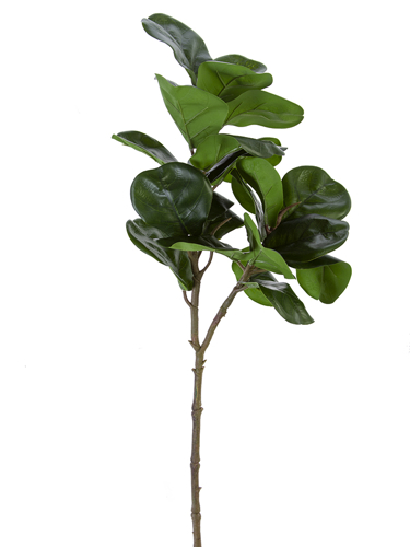 """Picture of 30"""" FIDDLE LEAF BRANCH"""