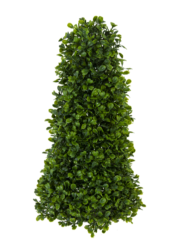 """Picture of 14"""" BOXWOOD CONE"""