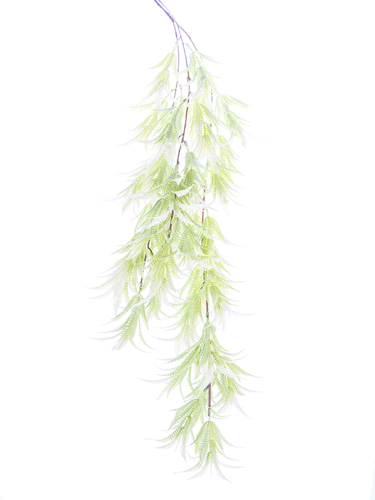 """Picture of 41"""" HANGING BOSTON FERN"""